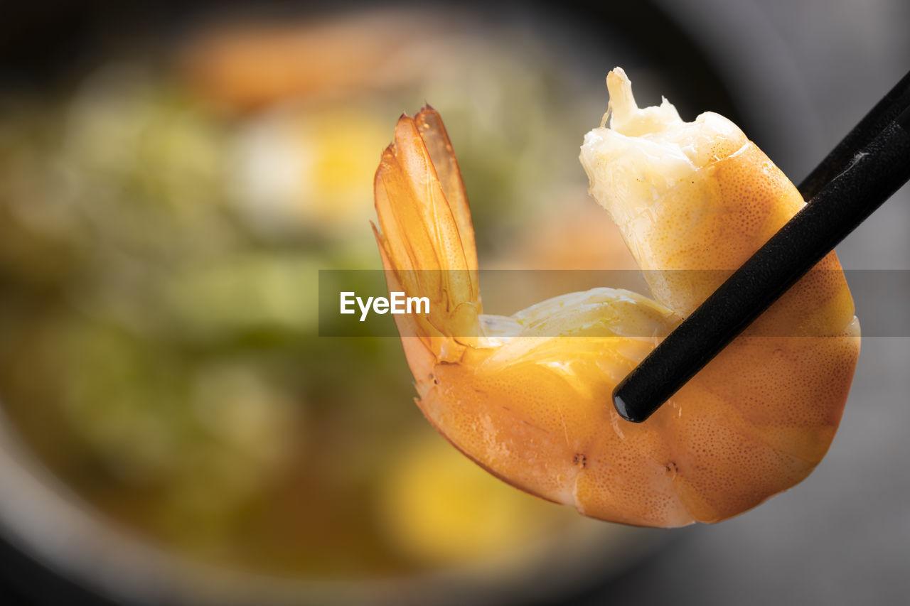 CLOSE-UP OF ORANGE FRUIT ON LEAF