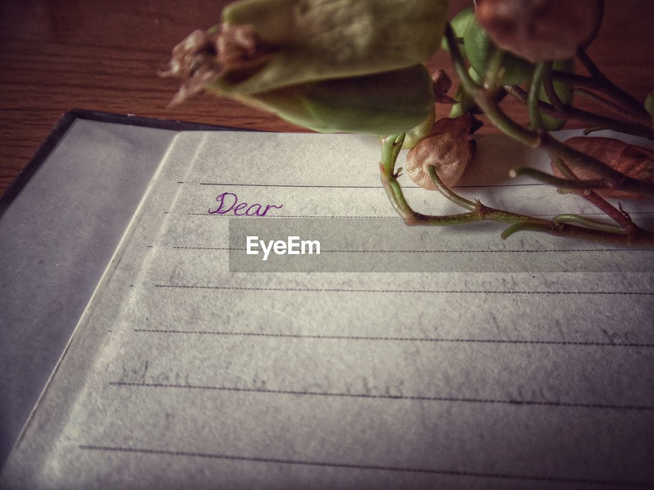 High angle view of text on diary