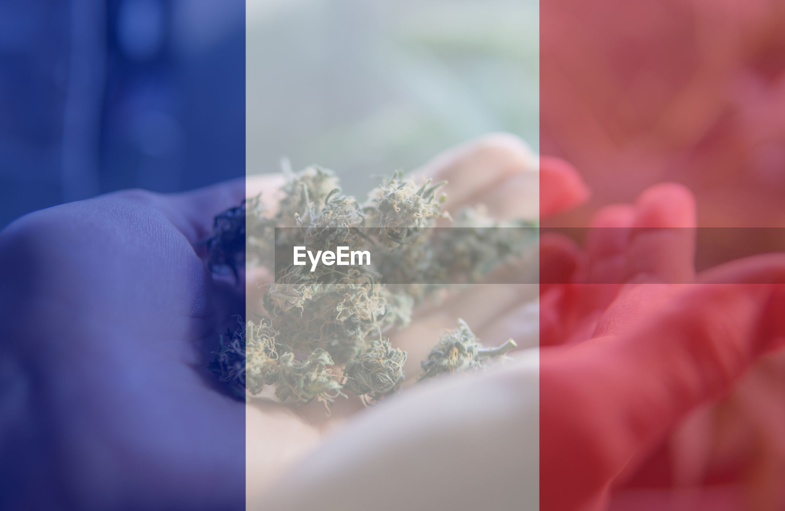 Digital composite image of french flag over person holding marijuana
