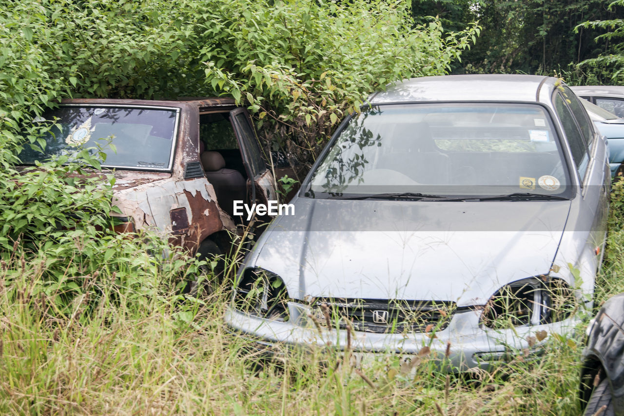 car, abandoned, transportation, damaged, obsolete, land vehicle, mode of transport, scrap metal, run-down, rusty, no people, day, tree, grass, outdoors