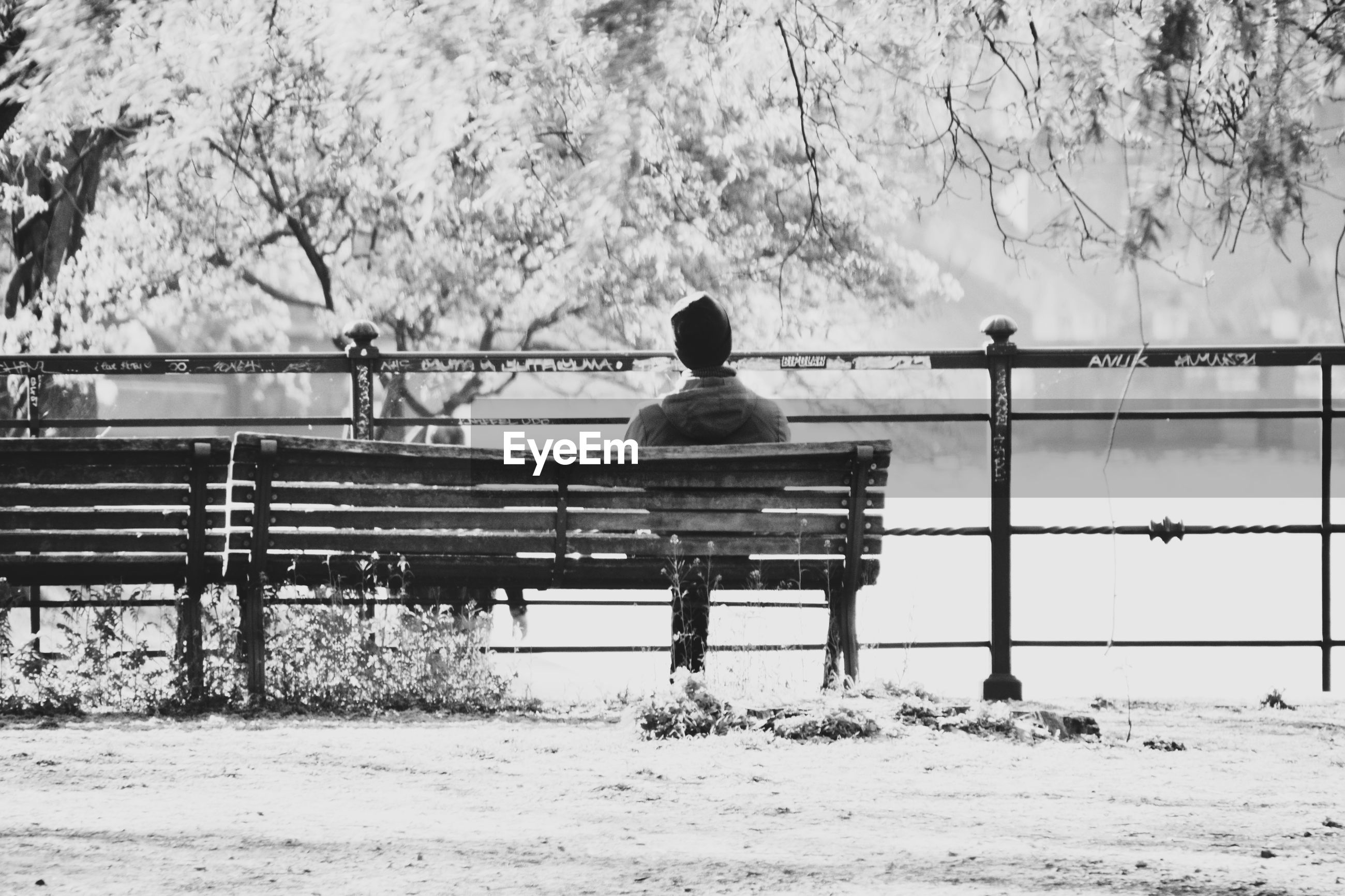 REAR VIEW OF MAN SITTING ON BENCH IN WINTER