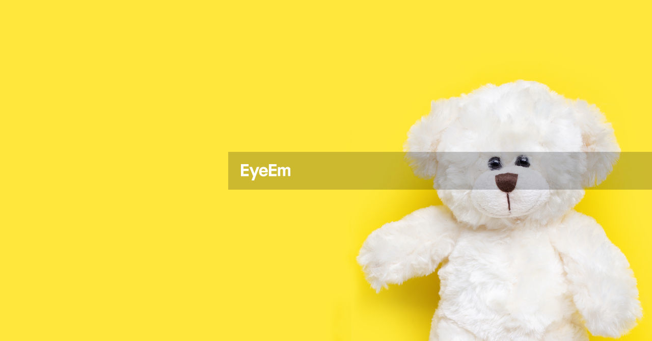 studio shot, toy, stuffed toy, yellow, colored background, teddy bear, indoors, animal representation, representation, cute, mammal, animal, domestic, animal themes, yellow background, no people, domestic animals, canine, copy space, dog, softness, small, innocence