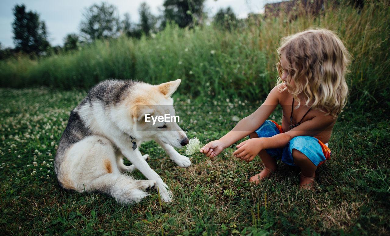 FULL LENGTH OF DOG ON GRASS