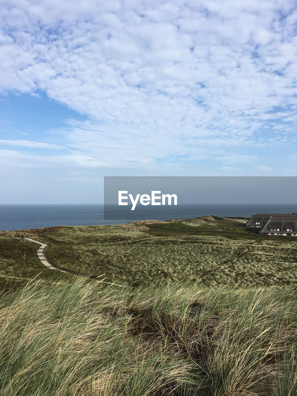 sky, beauty in nature, tranquil scene, scenics - nature, cloud - sky, sea, tranquility, land, water, plant, horizon, nature, horizon over water, no people, day, environment, grass, landscape, growth, outdoors, marram grass