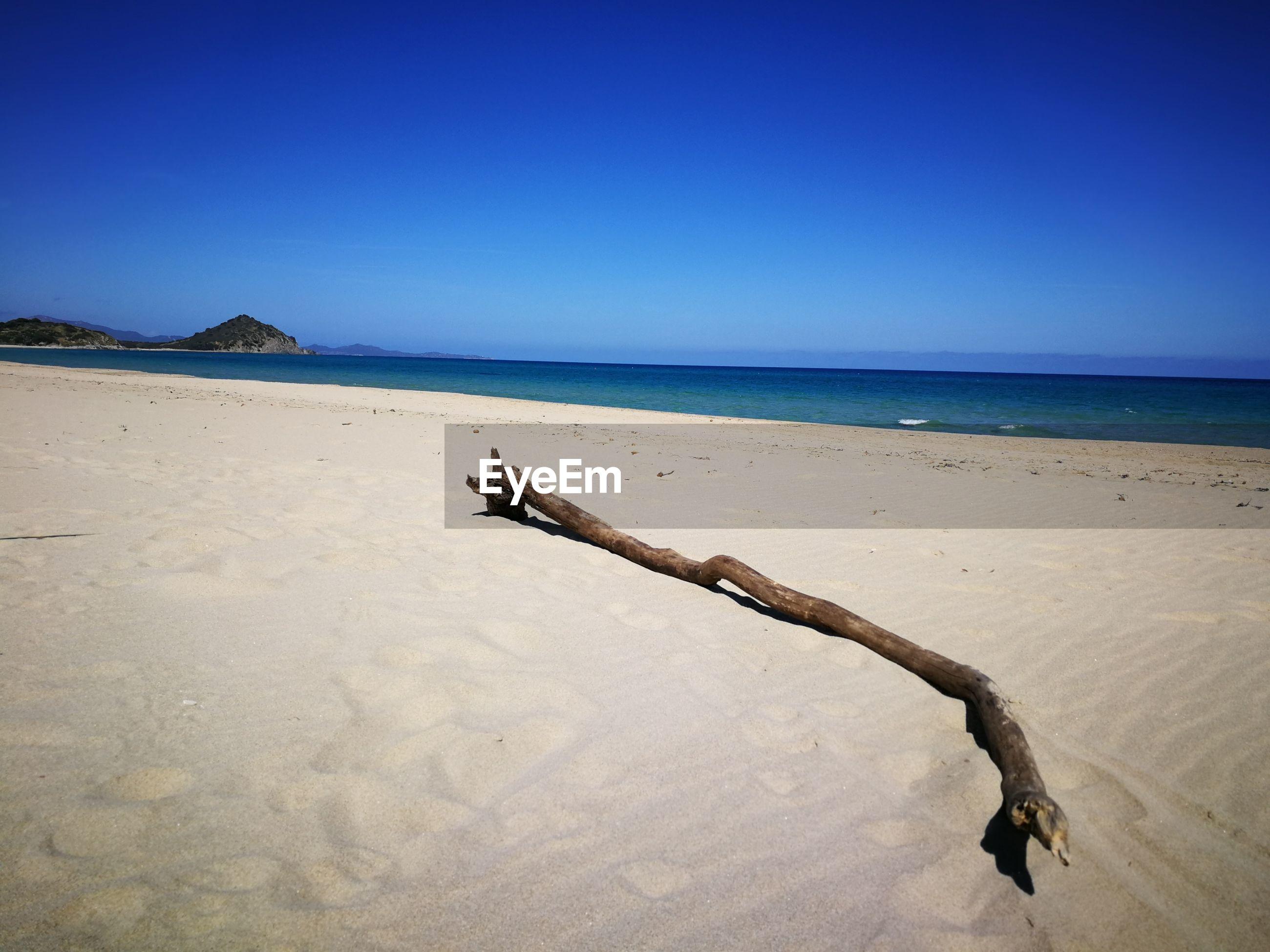 Driftwood on beach against clear blue sky