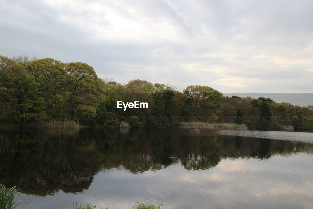 nature, reflection, sky, lake, tree, forest, water, no people, outdoors