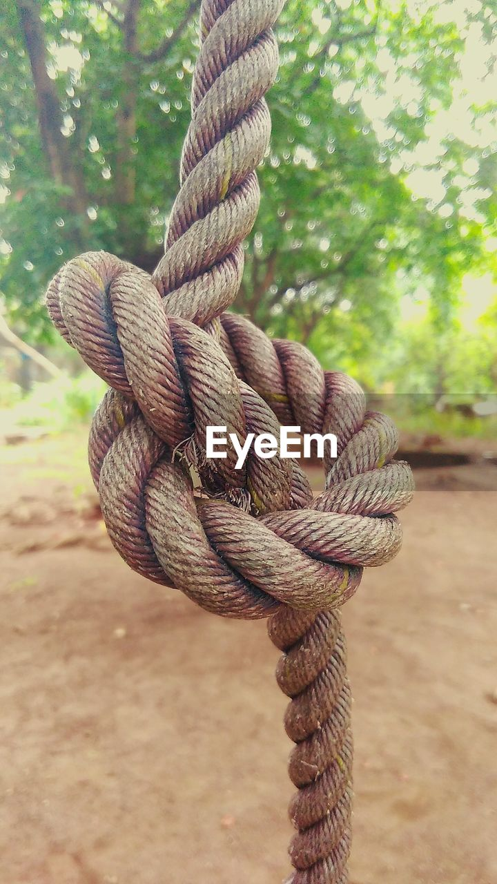 rope, strength, durability, connection, focus on foreground, tied up, tied knot, no people, outdoors, flexibility, close-up, day, braided