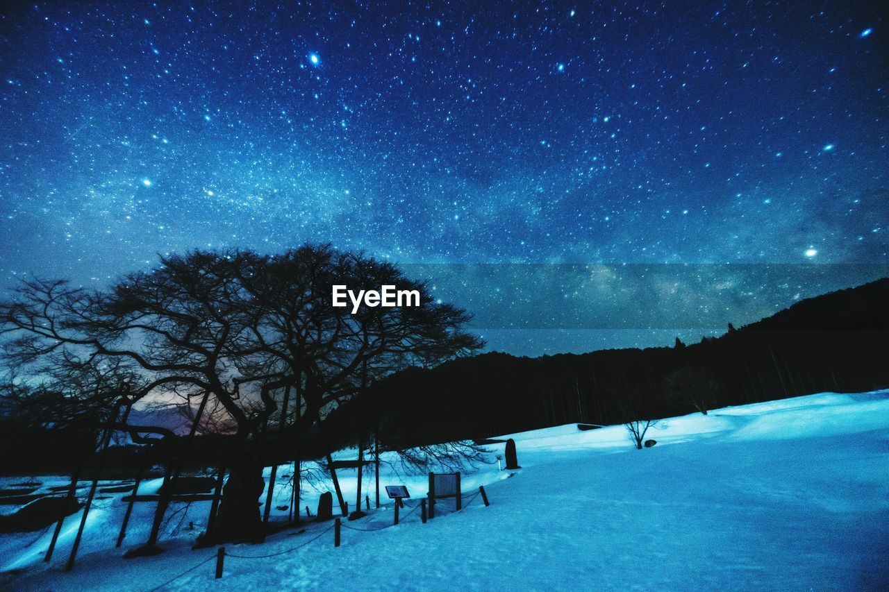snow, cold temperature, night, winter, nature, star - space, beauty in nature, weather, tree, tranquility, sky, scenics, outdoors, tranquil scene, no people, landscape, astronomy, galaxy