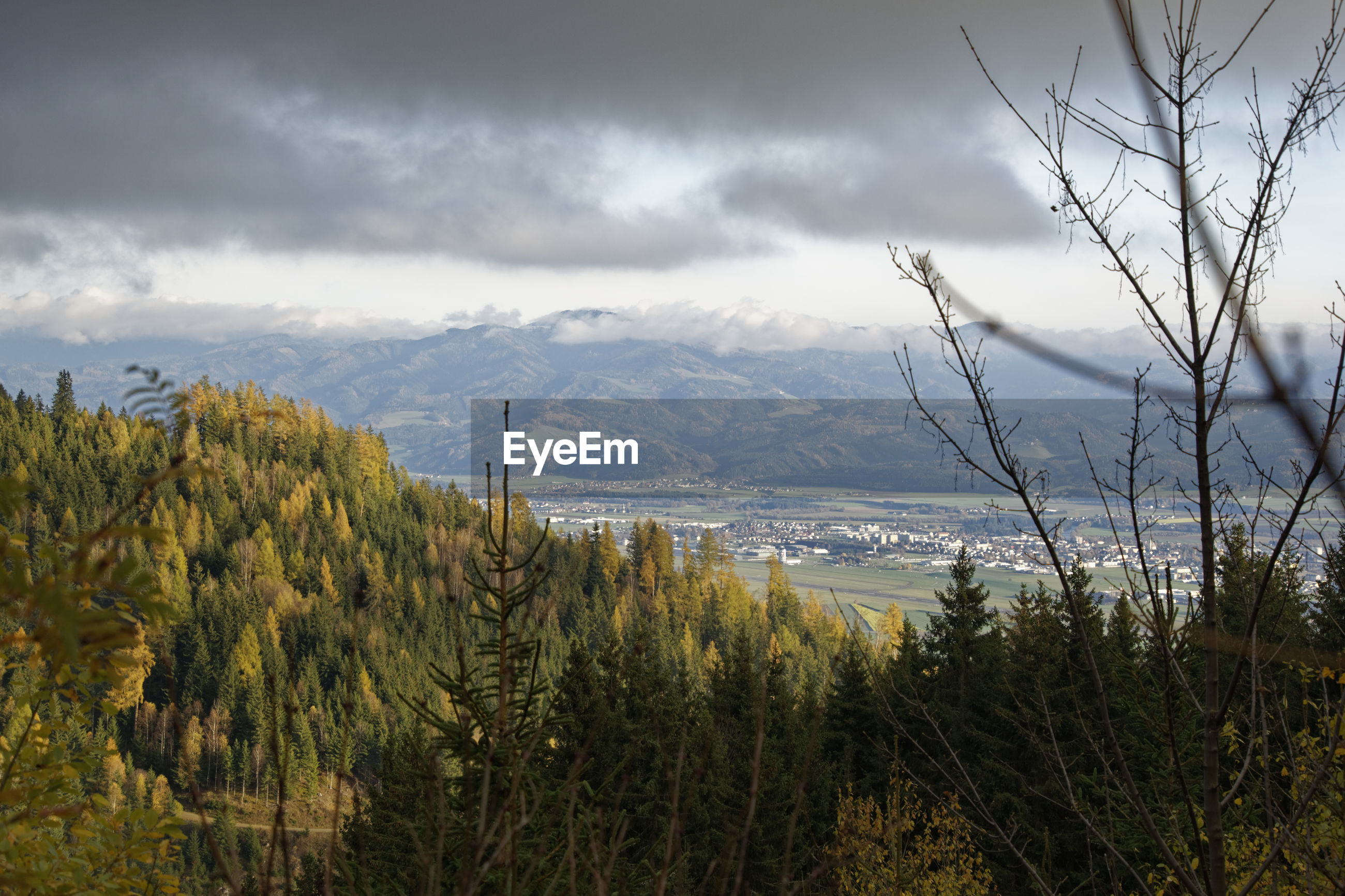 Scenic view of trees and mountains against sky