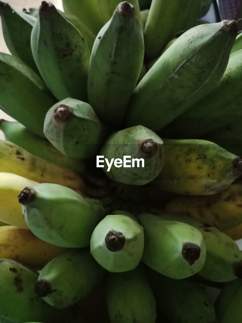 green color, fruit, healthy eating, food and drink, food, wellbeing, no people, backgrounds, full frame, freshness, close-up, cactus, banana, day, plant, large group of objects, succulent plant, tropical fruit, abundance, market, ripe