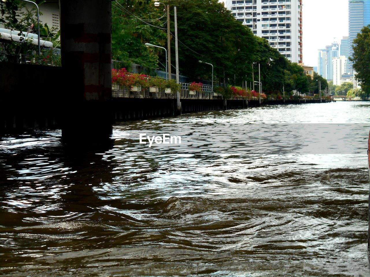 water, architecture, waterfront, built structure, building exterior, nature, tree, no people, river, day, city, reflection, building, plant, outdoors, rippled, bridge, flowing water, connection, flowing