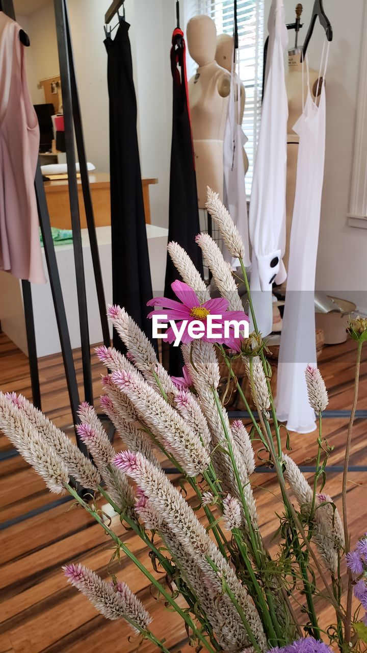 indoors, no people, human representation, clothing, mannequin, textile, variation, fashion, retail, store, flower, choice, representation, art and craft, flowering plant, dress, shopping, still life, for sale, home interior