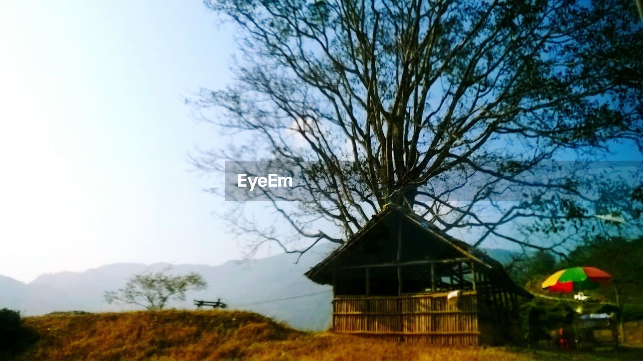 tree, built structure, architecture, sky, house, no people, day, outdoors, building exterior, nature, scenics, beauty in nature
