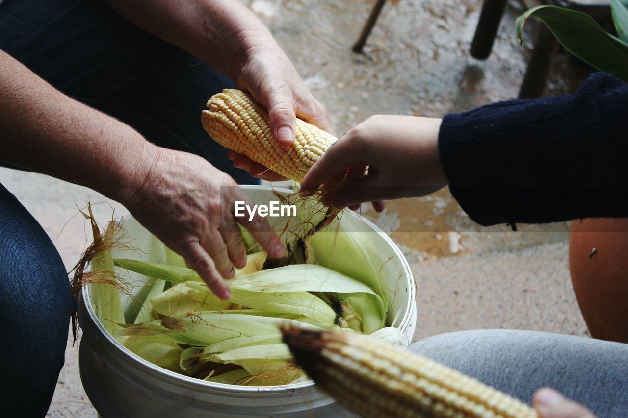 High Angle View Of People Peeling Corn