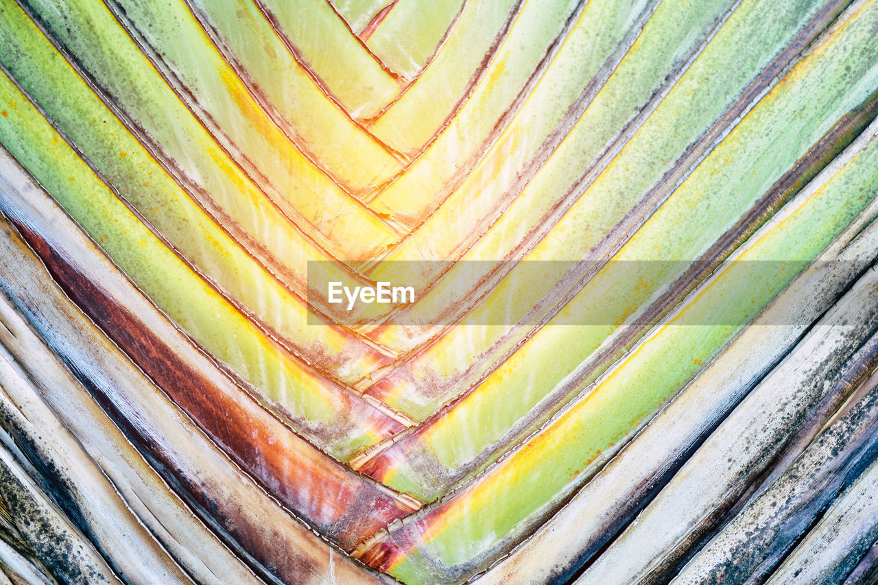 full frame, backgrounds, close-up, pattern, multi colored, no people, textured, natural pattern, striped, outdoors, day, nature, still life, beauty in nature, creativity, detail, yellow, design, abstract, semi-precious gem, layered