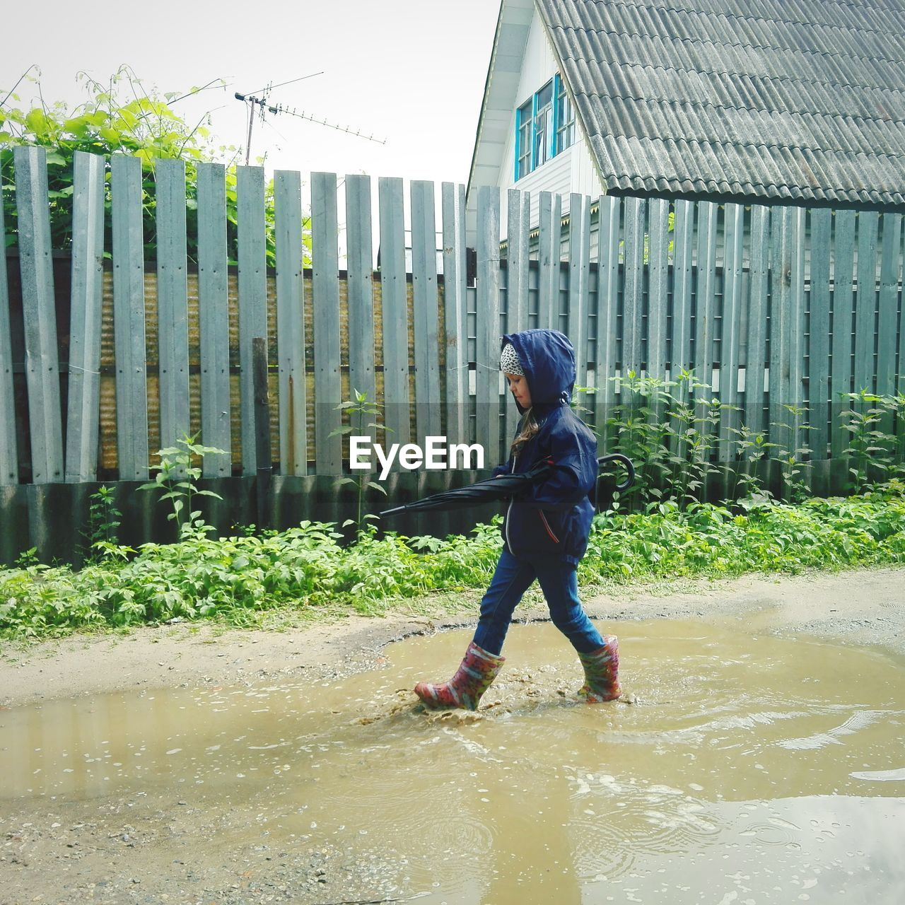 Girl Walking In Muddy Puddle By Fence