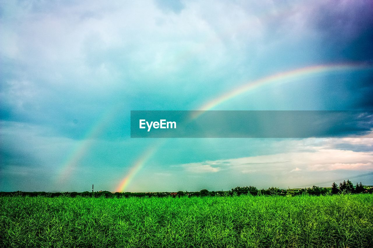 rainbow, double rainbow, nature, beauty in nature, scenics, field, agriculture, no people, tranquility, tranquil scene, idyllic, growth, sky, day, outdoors, cloud - sky, landscape, green color, rural scene, spectrum, tree