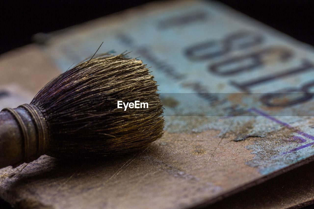 Close-Up Old Brush