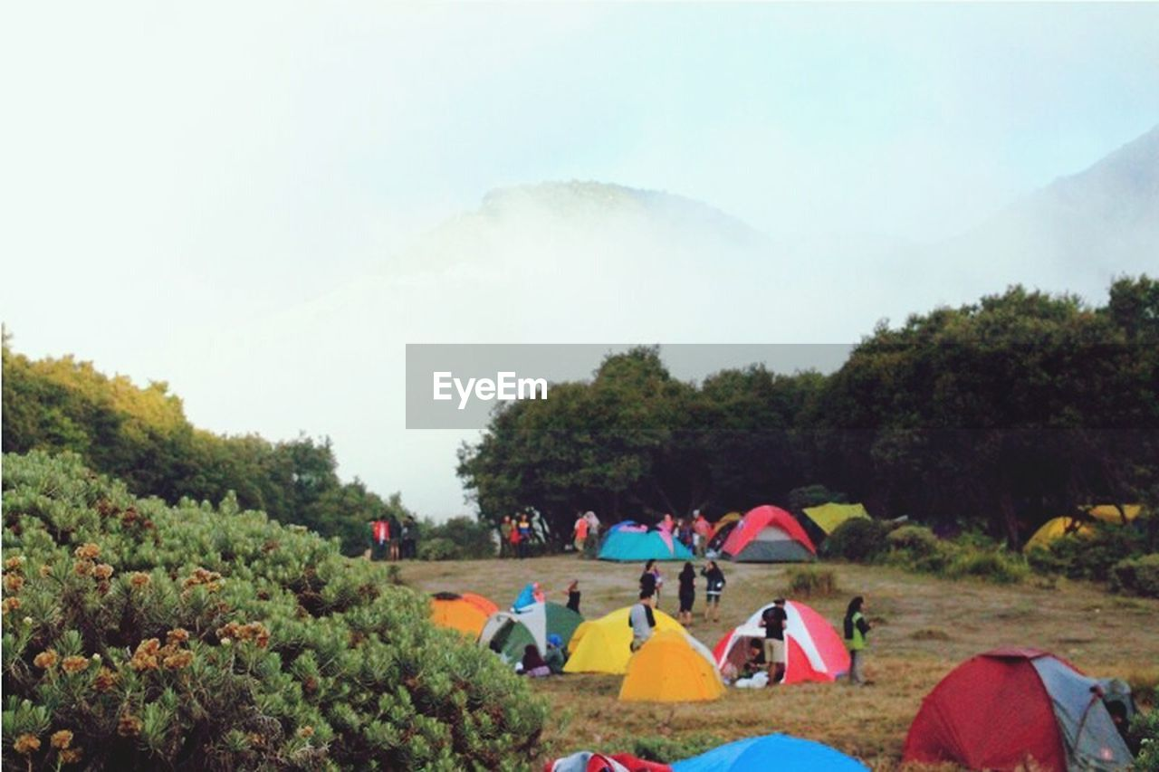 tree, tent, camping, togetherness, nature, medium group of people, real people, men, leisure activity, young men, mountain, people, day, adult, outdoors, young women, young adult, sky, friendship, beauty in nature, adults only