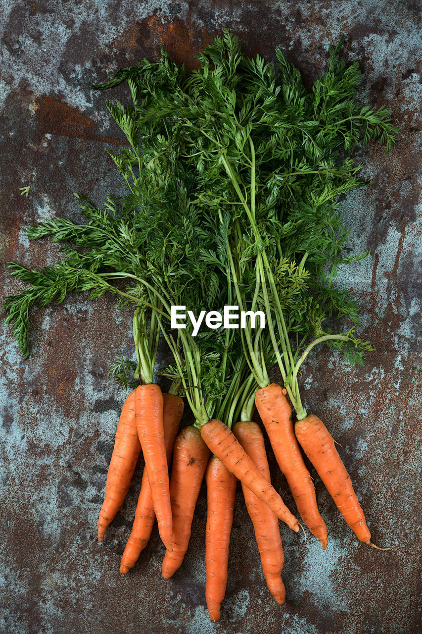 carrot, vegetable, root vegetable, healthy eating, food, food and drink, freshness, wellbeing, green color, organic, bunch, raw food, healthy lifestyle, orange color, people, high angle view, close-up, directly above