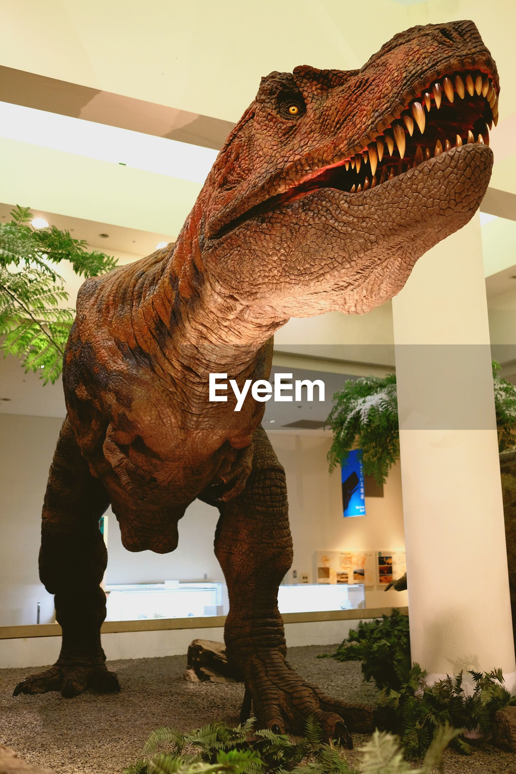 dinosaur, animal representation, sculpture, statue, animal themes, day, no people, nature, indoors, tree, mammal