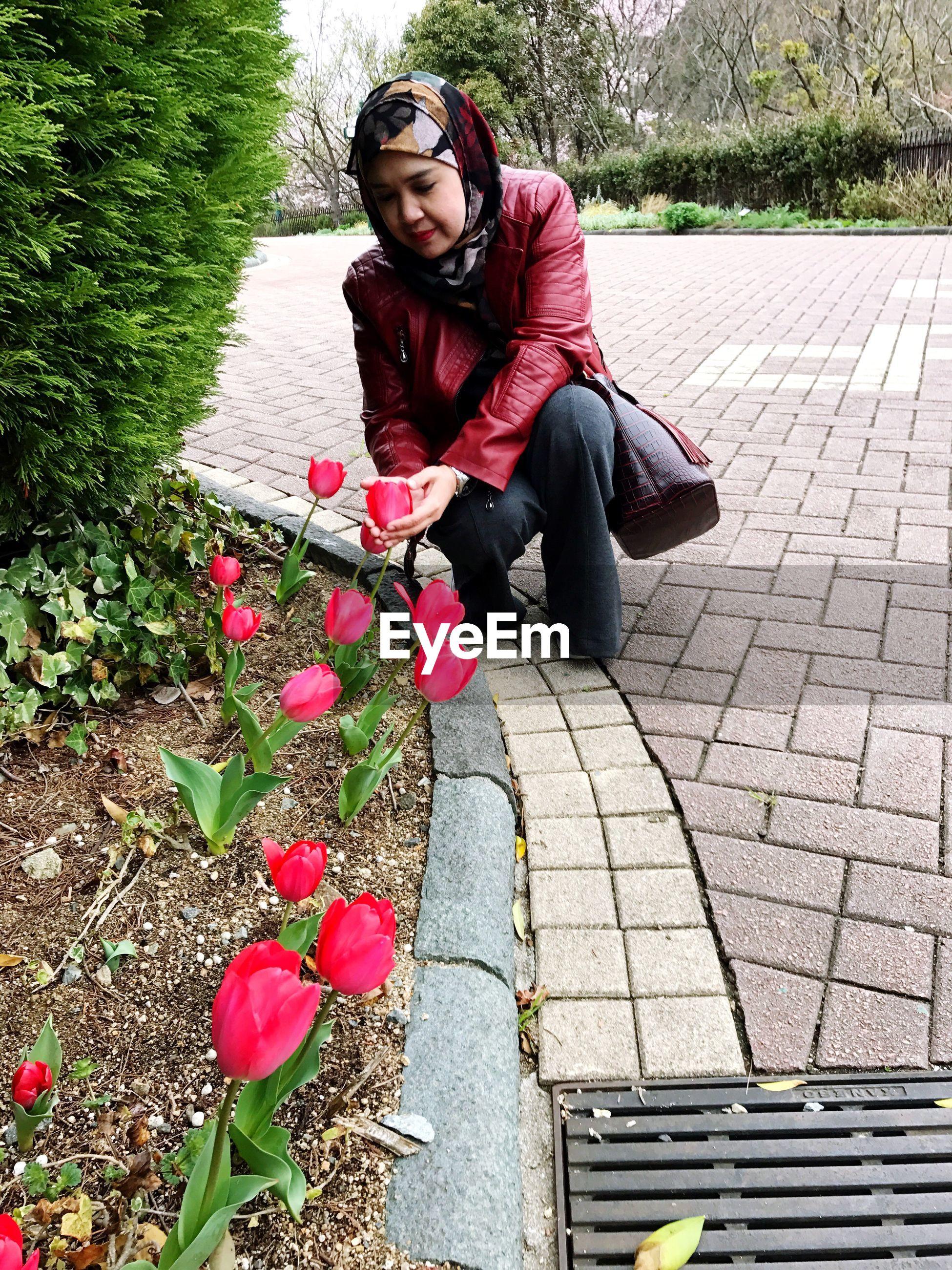 Woman wearing hijab touching tulip while crouching at park