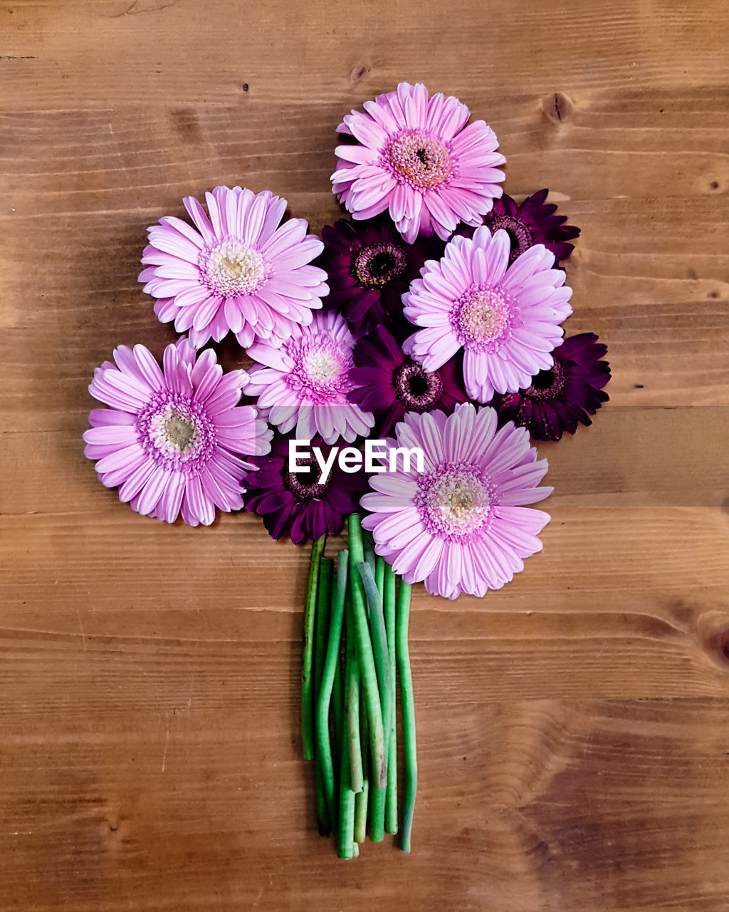 Directly Above Shot Of Pink And Purple Gerbera Daisies On Table