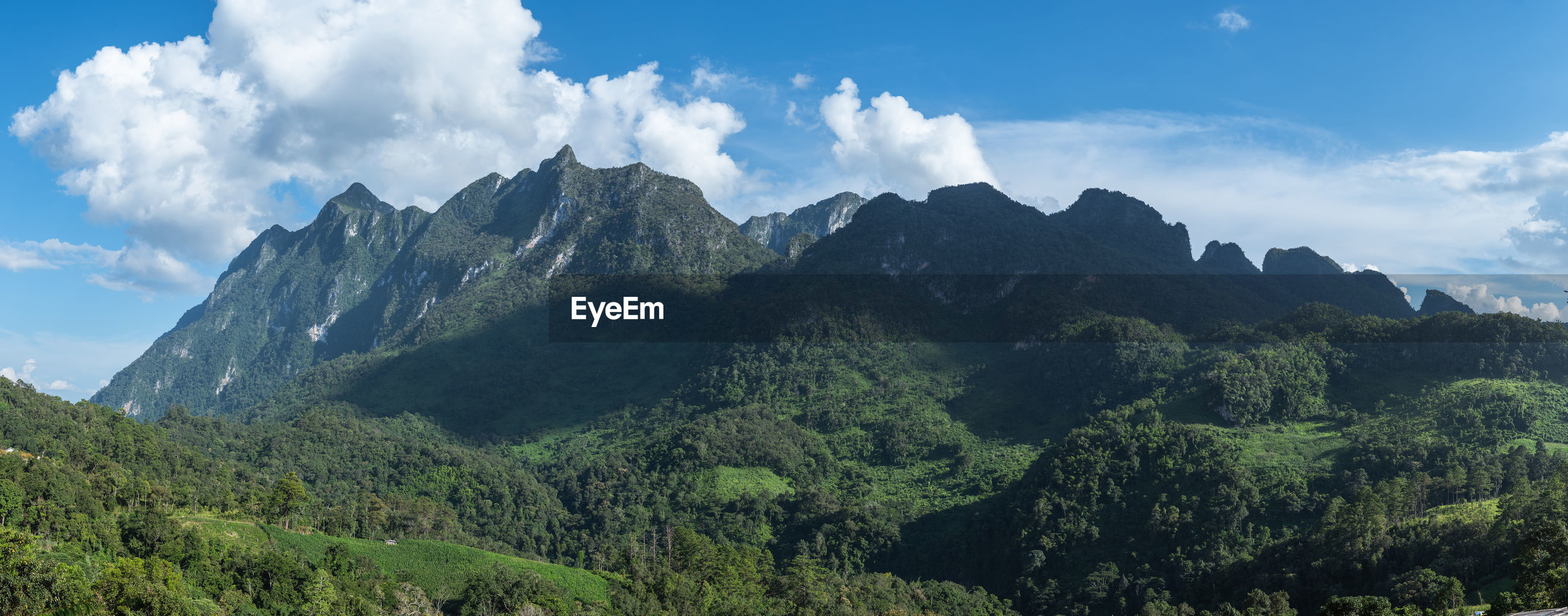 PANORAMIC VIEW OF TREES AND MOUNTAIN AGAINST SKY