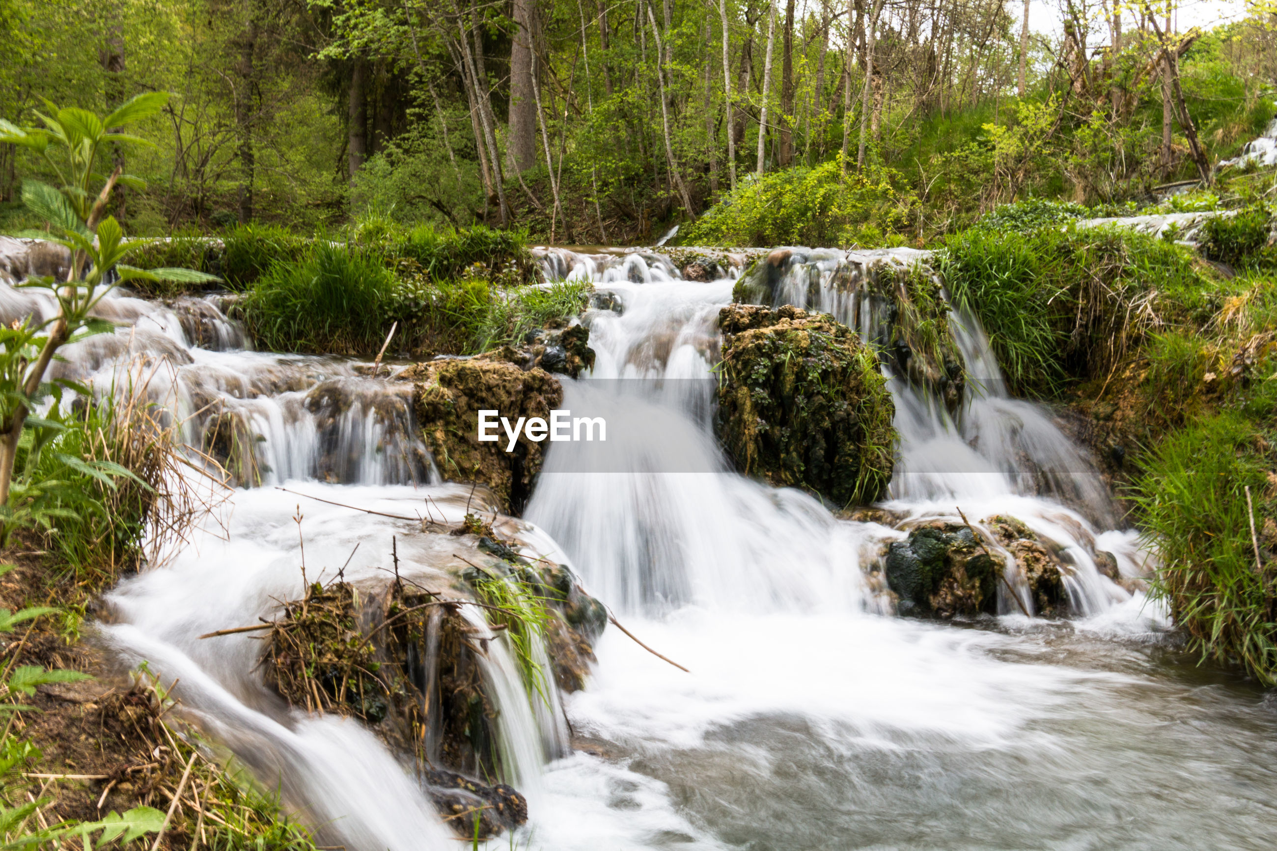 long exposure, tree, scenics - nature, motion, forest, beauty in nature, plant, flowing water, blurred motion, waterfall, water, land, solid, no people, nature, rock, environment, rock - object, day, flowing, outdoors, power in nature, rainforest, stream - flowing water, woodland, falling water
