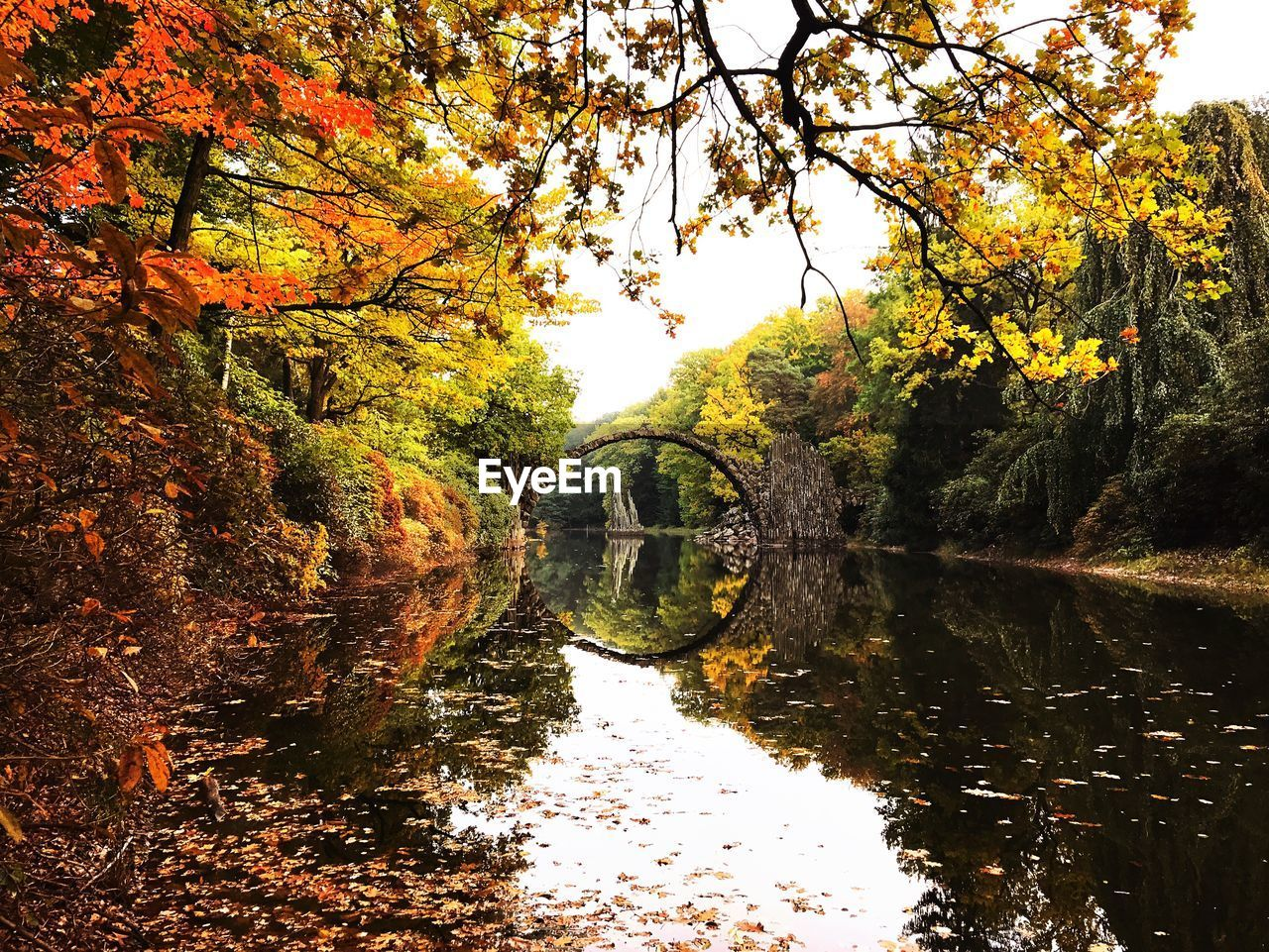 tree, reflection, autumn, nature, beauty in nature, water, tranquility, tranquil scene, scenics, change, lake, built structure, no people, leaf, outdoors, day, bridge - man made structure, architecture, travel destinations, growth, waterfront, branch, forest, sky, building exterior