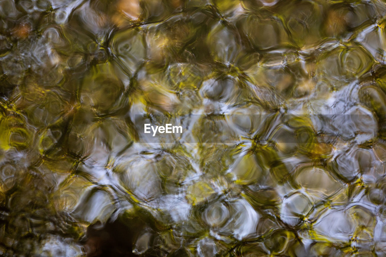 full frame, backgrounds, water, no people, nature, pattern, close-up, rippled, high angle view, transparent, natural pattern, textured, bubble, day, indoors, abstract, food and drink, directly above, purity