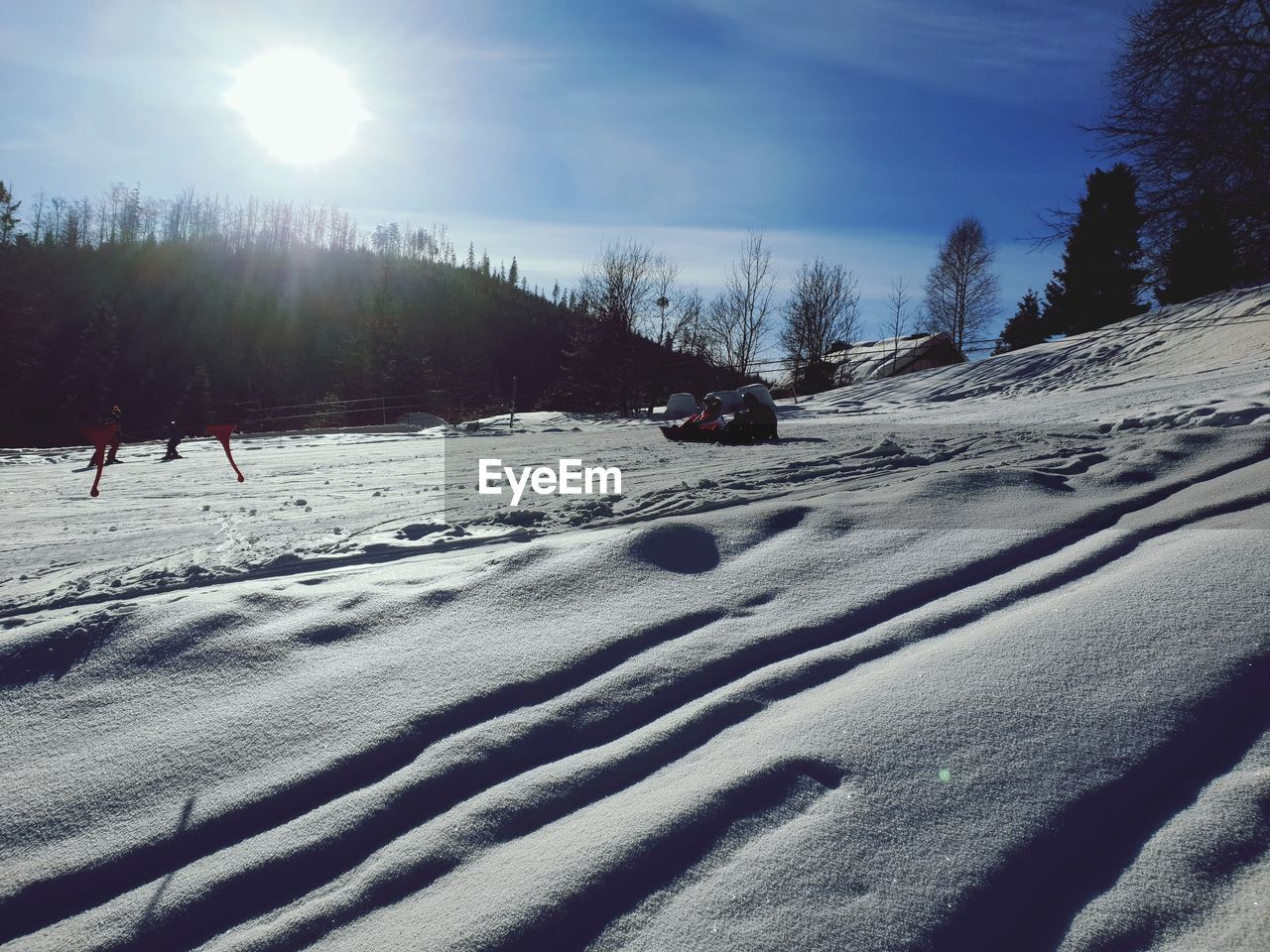 snow, winter, cold temperature, tree, sky, covering, nature, sunlight, plant, day, beauty in nature, land, mountain, sun, scenics - nature, field, tranquility, frozen, environment, outdoors, no people, lens flare, snowcapped mountain, powder snow