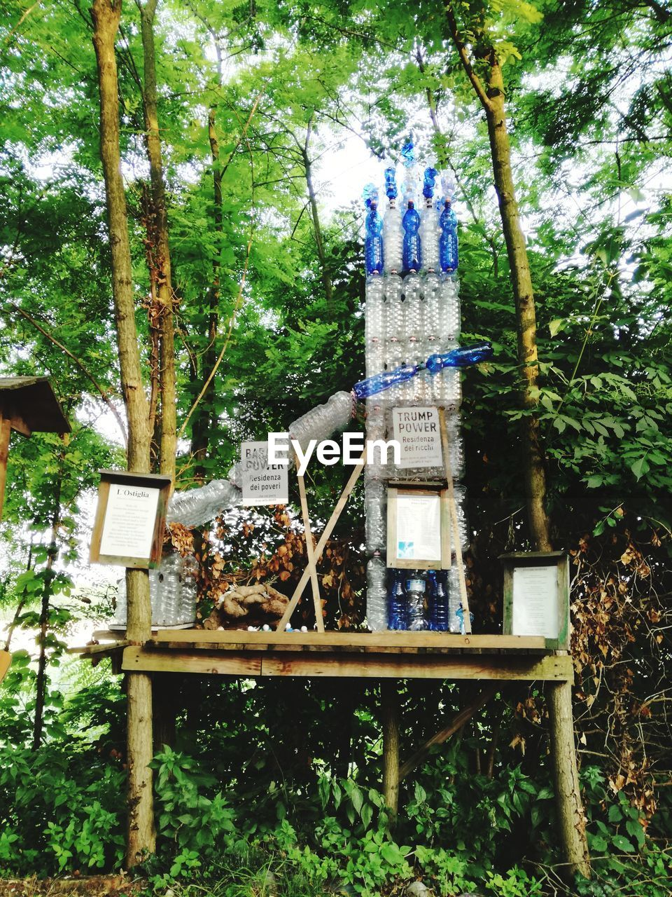 plant, tree, day, nature, growth, no people, outdoors, forest, architecture, green color, land, communication, built structure, park, wood - material, art and craft, religion, sign, spirituality, text