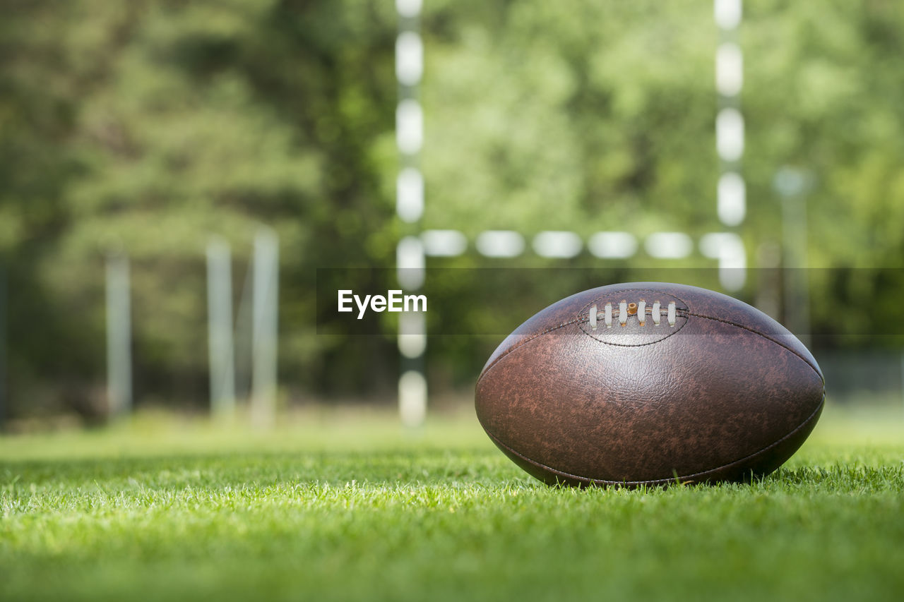grass, plant, sport, ball, green color, day, nature, no people, selective focus, focus on foreground, close-up, sphere, field, outdoors, metal, playing field, land, park - man made space, park, sunlight