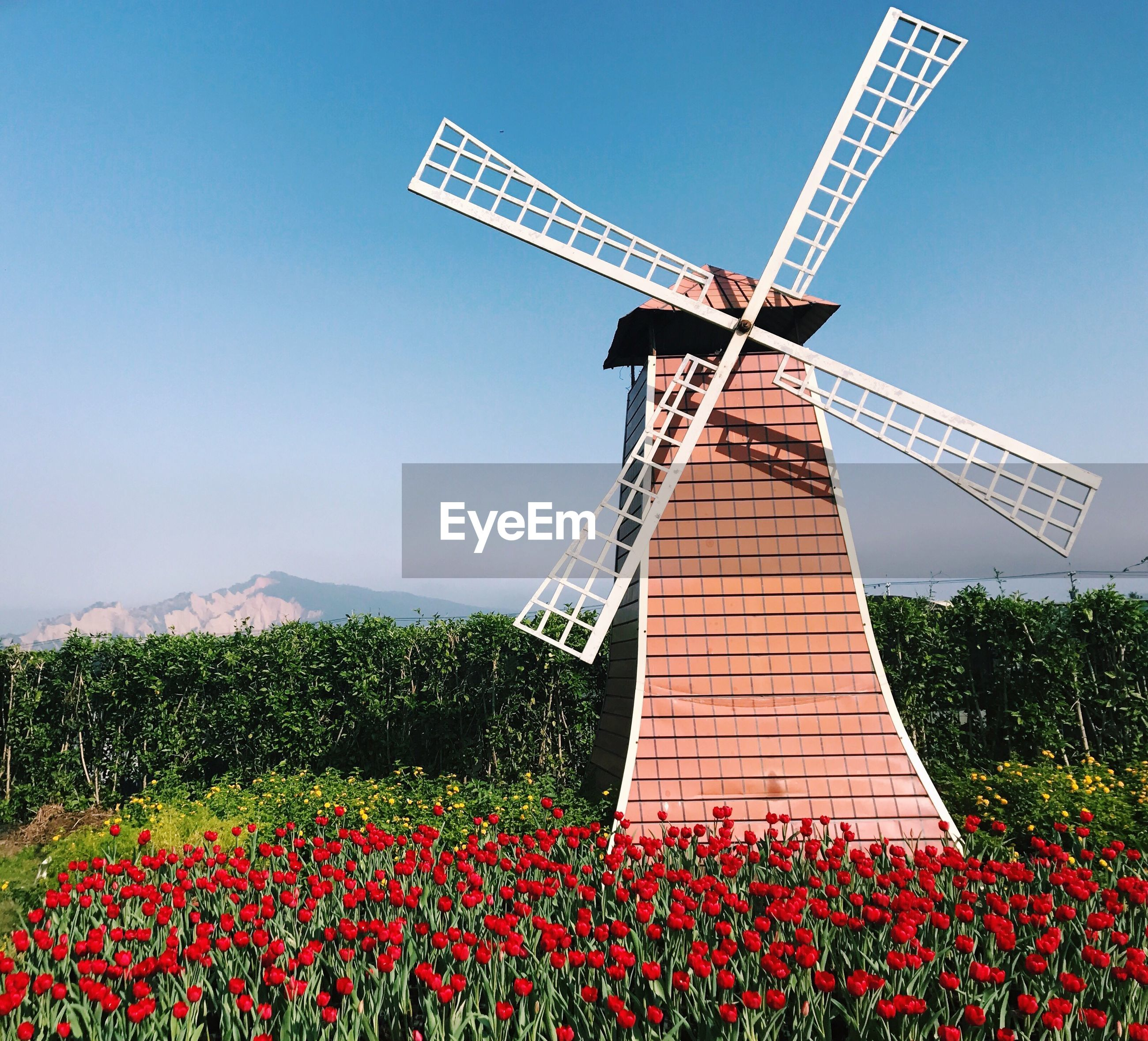 LOW ANGLE VIEW OF WINDMILL ON FIELD AGAINST SKY