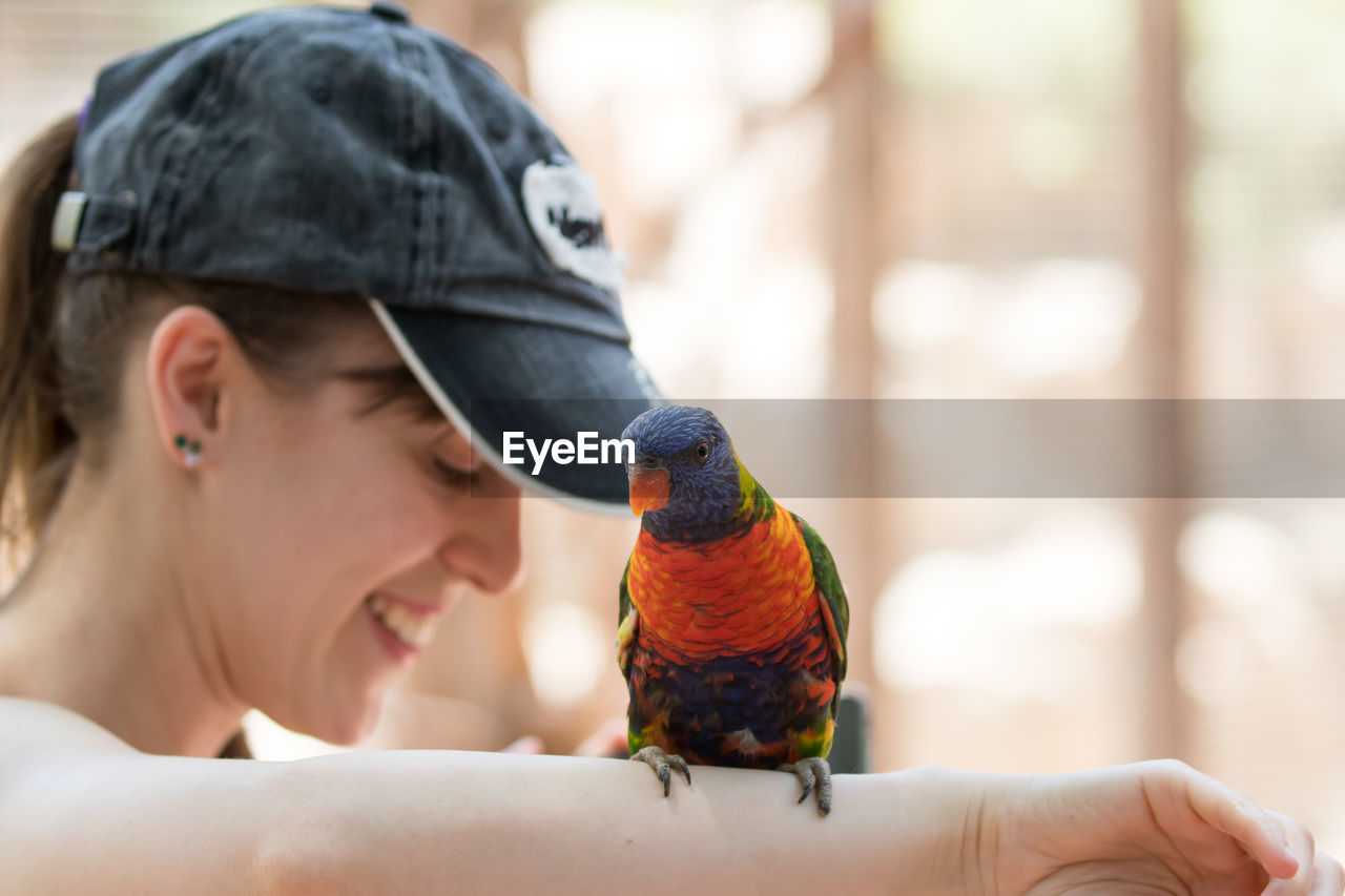 Close-Up Of Parrot Perching On Hand