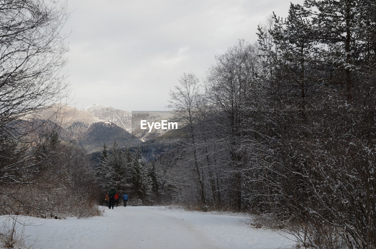tree, snow, cold temperature, winter, mountain, plant, sky, scenics - nature, beauty in nature, nature, real people, leisure activity, day, walking, cloud - sky, unrecognizable person, rear view, bare tree, tranquility, mountain range, outdoors, snowcapped mountain