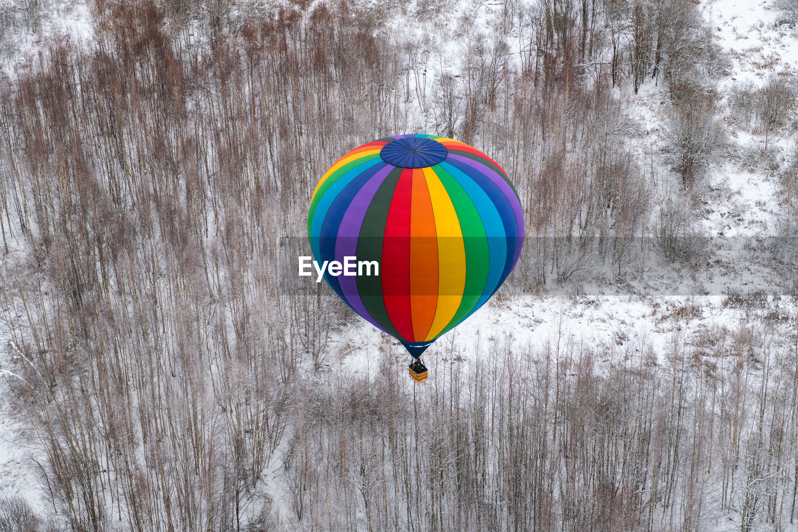 Multi colored hot air balloon flying over trees