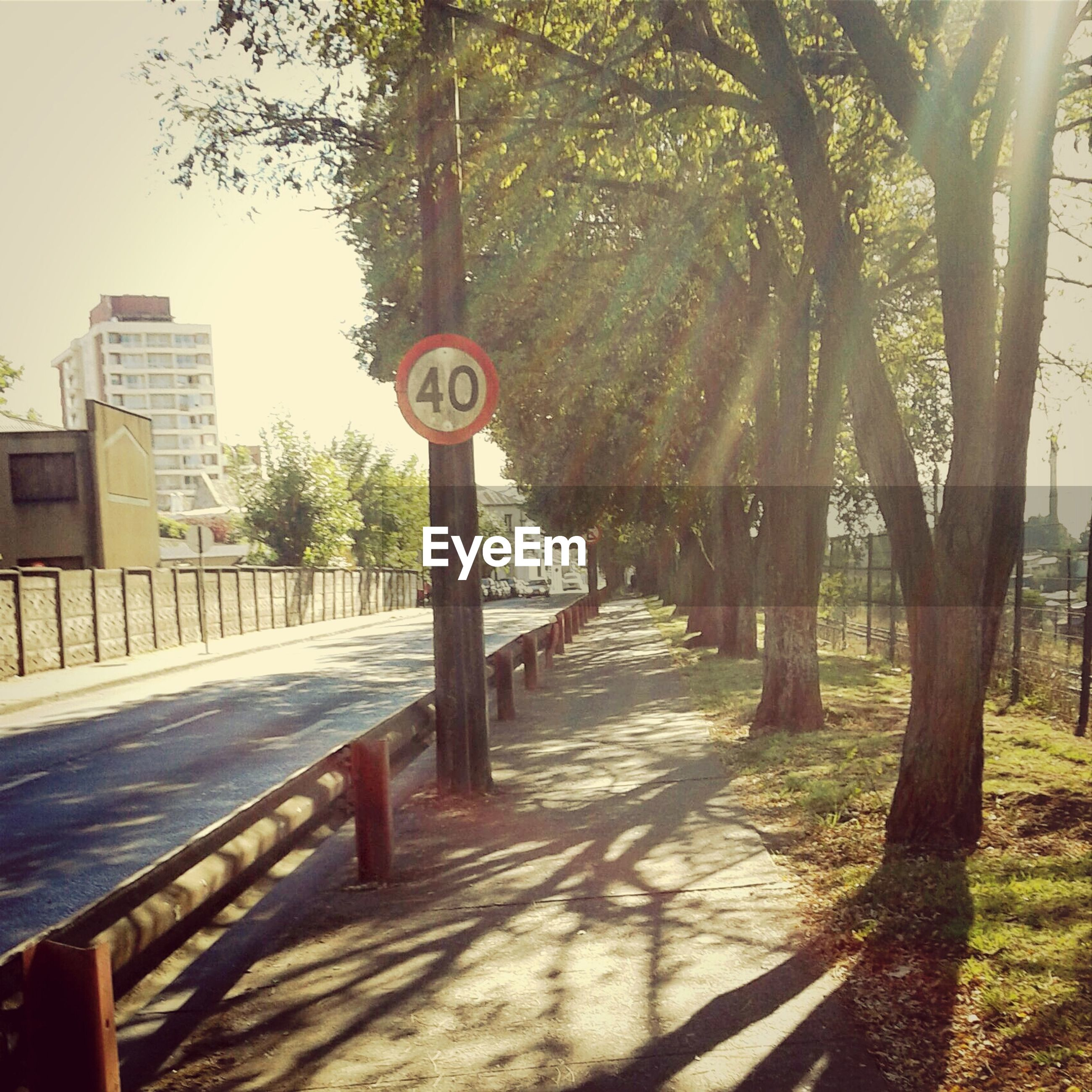 tree, built structure, architecture, text, building exterior, communication, western script, sign, road sign, information sign, day, the way forward, outdoors, sunlight, no people, guidance, wood - material, clear sky, railing, tree trunk