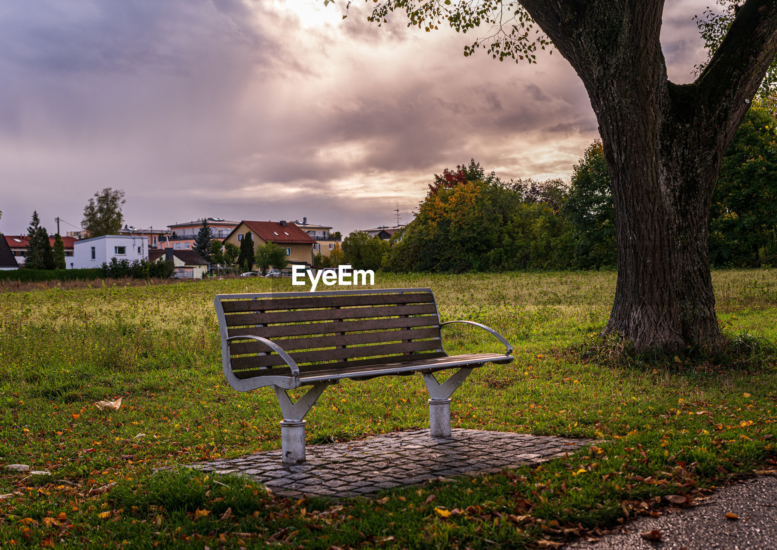 Empty bench on field by trees against sky