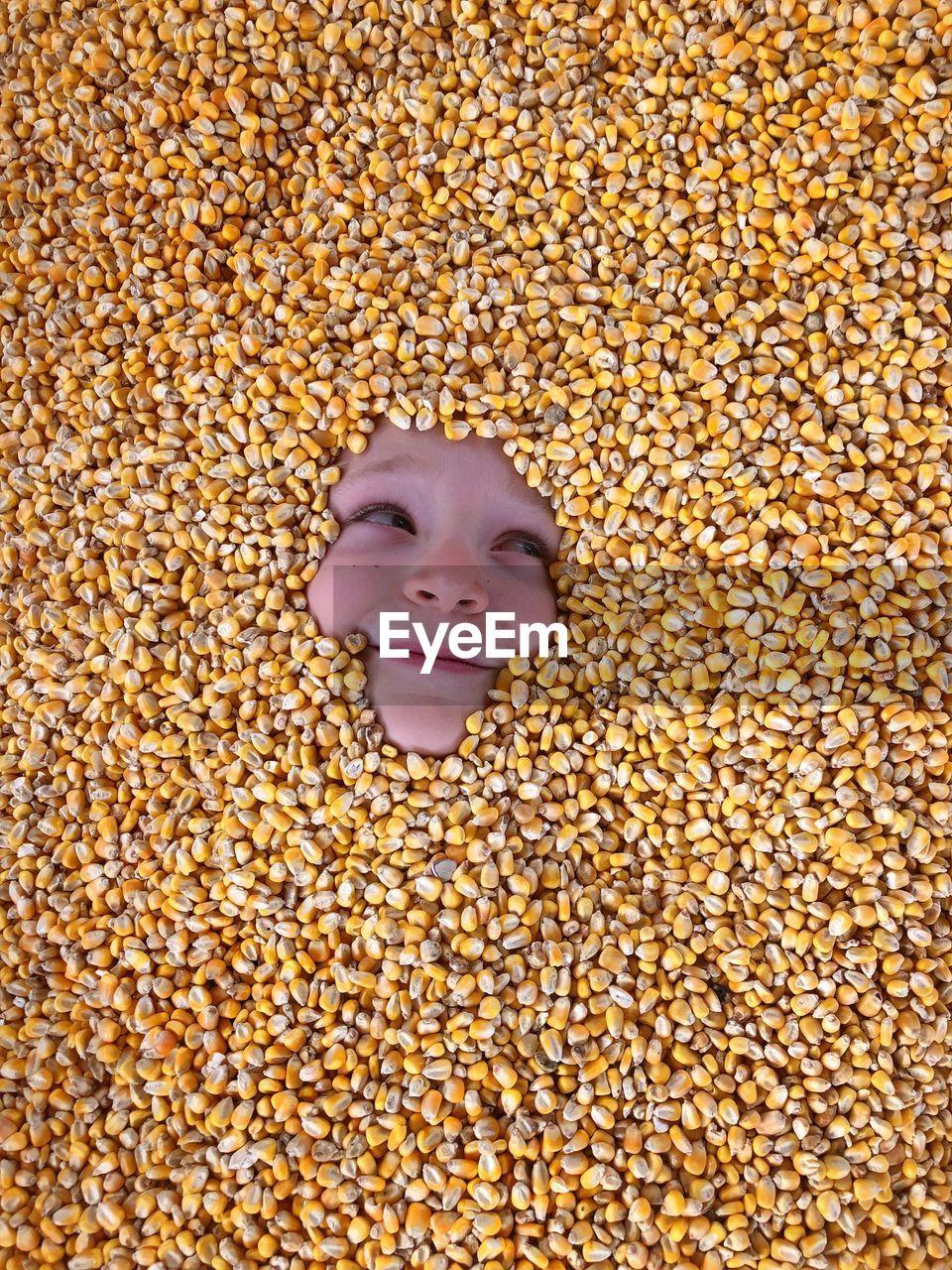 High angle view of teenage girl amidst corns