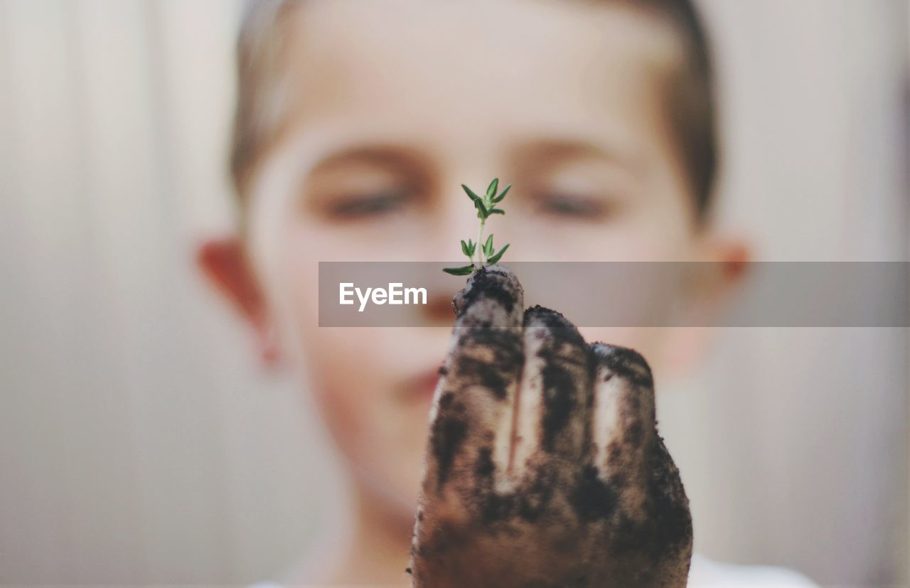 Close-up of boy with dirty hand holding sapling