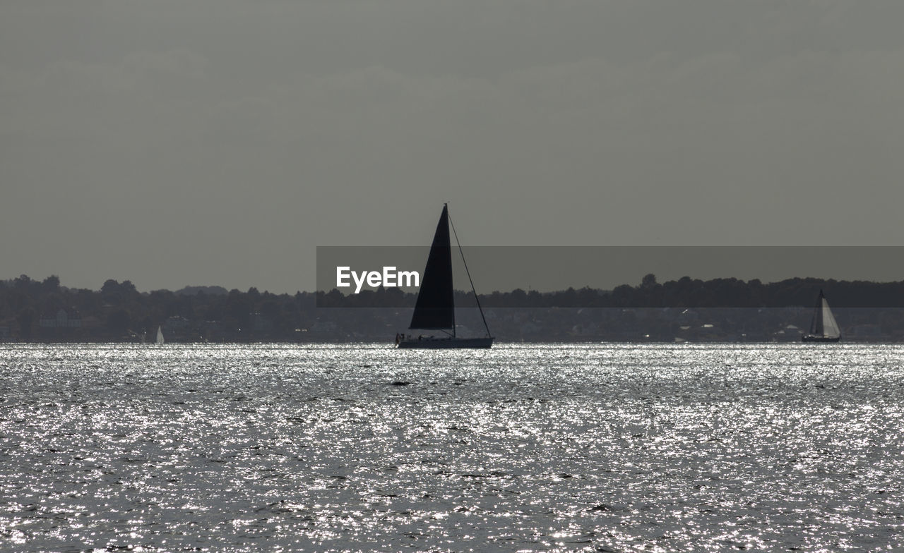 sky, water, nature, tranquility, scenics - nature, tranquil scene, sailboat, beauty in nature, copy space, no people, nautical vessel, waterfront, tree, plant, clear sky, land, silhouette, sailing, day, outdoors