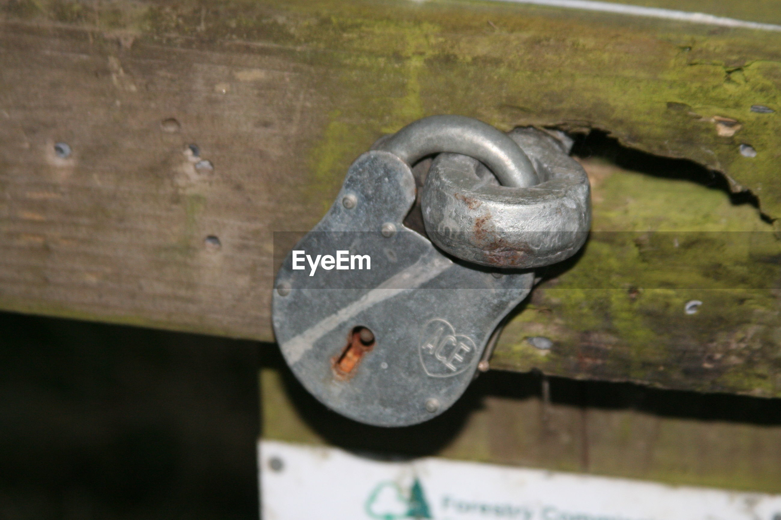 Close-up of metal padlock on door