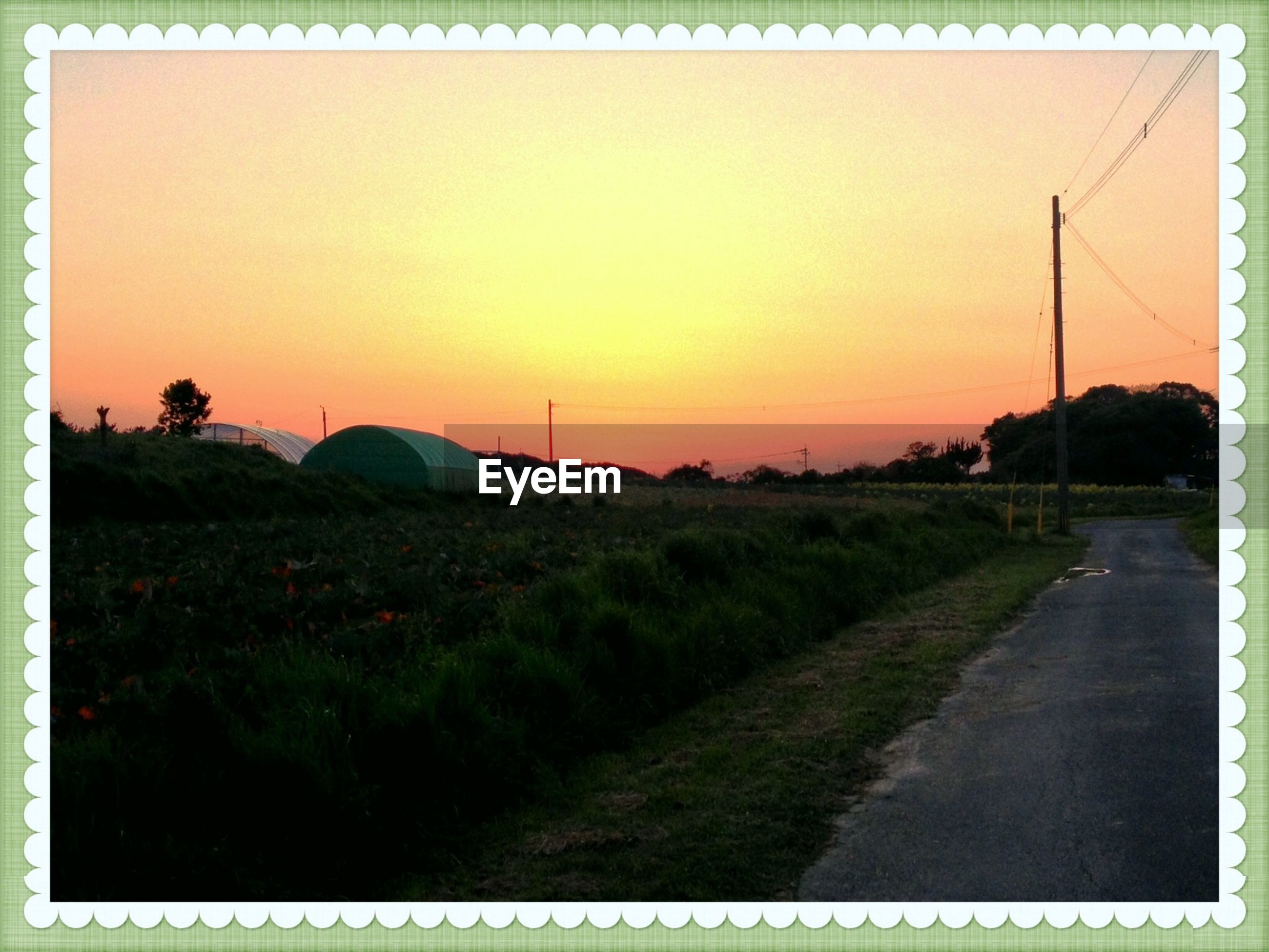 transfer print, sunset, auto post production filter, grass, landscape, field, sky, tranquil scene, scenics, tranquility, beauty in nature, nature, road, tree, orange color, grassy, plant, outdoors, transportation, growth