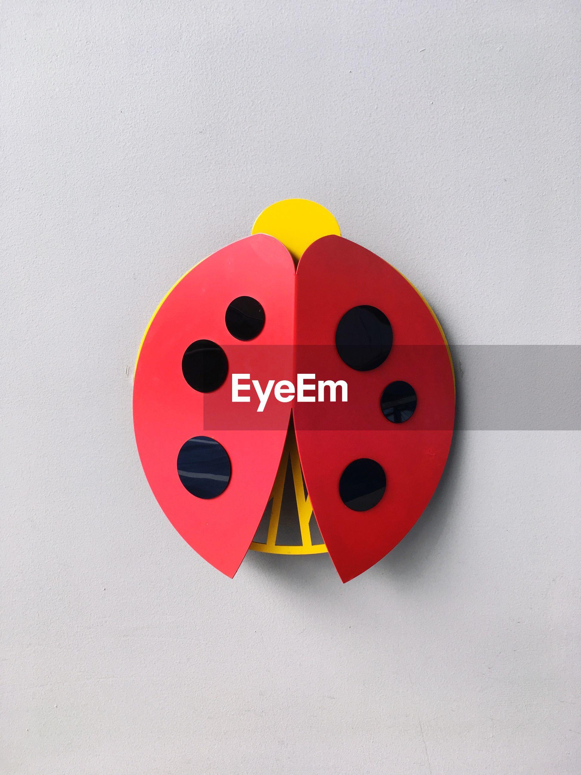 Close-up of toy bug on white background
