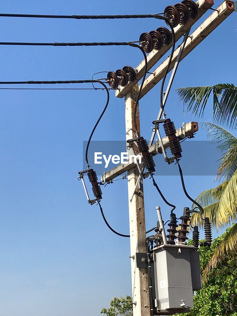 cable, electricity, sky, low angle view, power line, technology, power supply, connection, nature, electricity pylon, tree, clear sky, blue, no people, fuel and power generation, day, plant, lighting equipment, outdoors, built structure, complexity, telephone line, electrical equipment