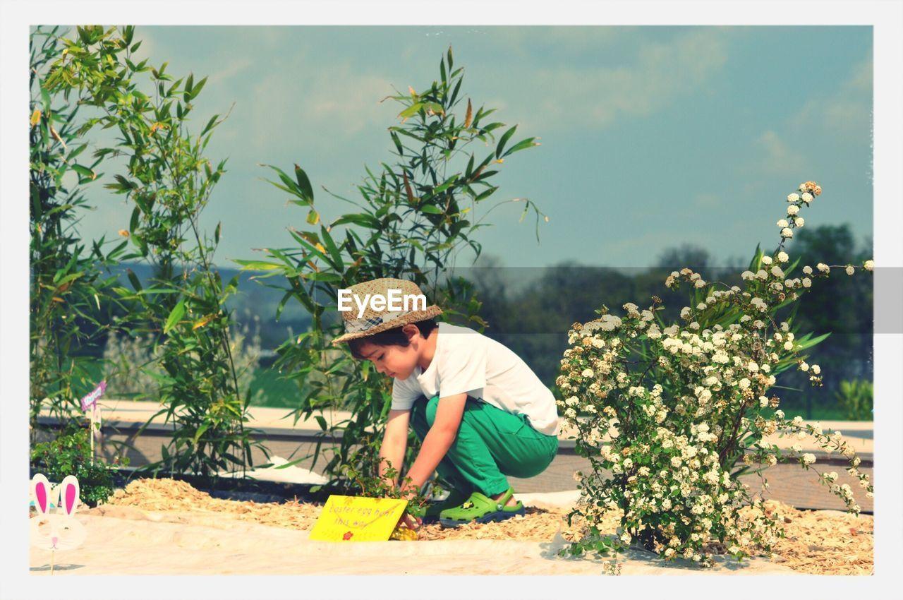 Cute Boy Playing Amidst Plants On Field