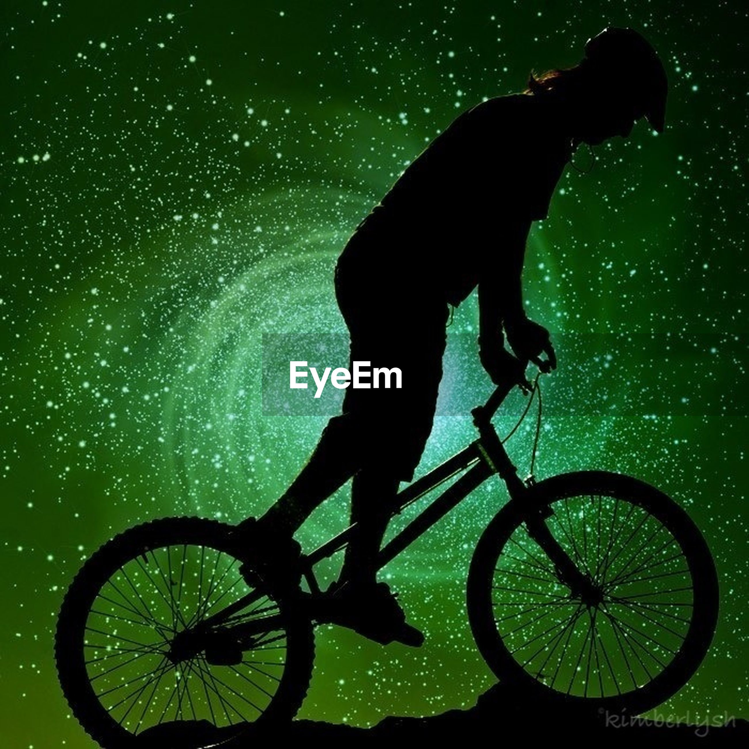 bicycle, animal themes, full length, night, one animal, silhouette, land vehicle, transportation, water, mode of transport, side view, pets, domestic animals, men, riding, street, outdoors, motion