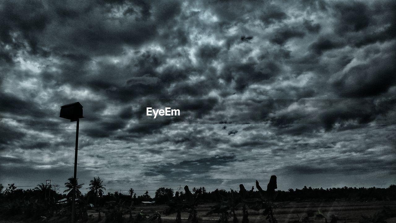 cloud - sky, sky, nature, silhouette, beauty in nature, growth, tranquility, low angle view, outdoors, tree, storm cloud, scenics, landscape, day, no people